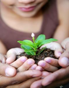 Guía dinámica de ayudas e incentivos para la creación de empresas